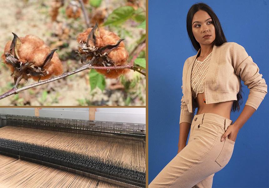 Empresa lança o primeiro jeans brasileiro produzido com algodão colorido da Paraíba